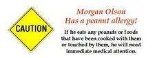 180 allergy caution labels.  No nuts peanuts.  Peel & Stick.  Personalized.
