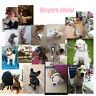 Pet Dog Cat Puppy Neck Collar Adjustable Rivet Spiked Studded PU Leather Strap