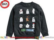 NEXT Pullover Sweatshirt mit Wintermotiv für Jungen 11 Jahre 146cm 15a