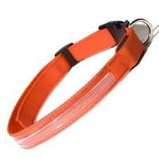 Colliers lumineux orange en nylon pour chien