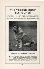 """ELKHOUND OLD VINTAGE 1934 NAMED DOG PRINT PAGE """"SKOLL OF DOGSTHORPE"""""""