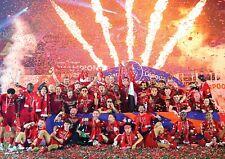 Liverpool FC Poster NEW Champions 2020 Premier League, FREE P+P CHOOSE YOUR SIZE