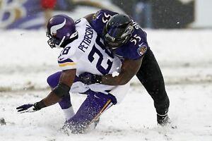 ADRIAN PETERSON TERRELL SUGGS 8X10 PHOTO MINNESOTA VIKINGS PICTURE NFL FOOTBALL