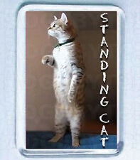 STANDING CAT SMALL FRIDGE MAGNET -  COOL!