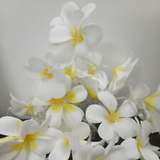 White Yellow Frangipani 35 LED Bulb Fairy Light wedding party event decorations