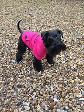 Ancol Pink 'anything for Kisses' Dog Puppy Hoodie Sweatshirt 4 Sizes Xmas Gift Small 30cm