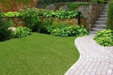 NEW Synthetic Artificial Grass Turf 30 sqm Roll - 20 mm - LOWEST PRICE ON EBAY