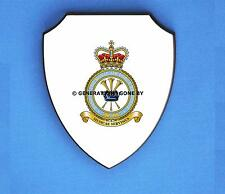 BAND OF THE ROYAL AIR FORCE REGIMENT WALL SHIELD (FULL COLOUR)