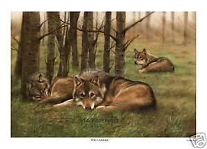 'The Cuanac' Limited Edition Fine Art Print, Wolf print