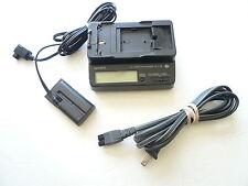 sony AC-V700 & DK-415 for GV-A500 EVO-250 GV-D300 GV-D900 DSR-V10 110-220 Volts