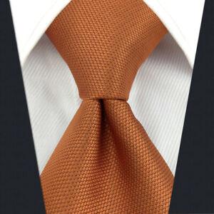 SHLAX&WING Ties for Men Solid Color Orange Necktie Silk Business