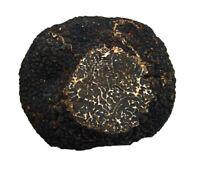 3.17oz 90g fresh Black PERIGORD TRUFFLE T melanosporum ITALY Deli  трюфель TOP G