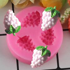 Grapes Fondant Mould Cake Decorating Mold Bakeware Frame M236