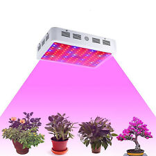 1000W LED Grow Light Lamp Double Chip Full Spectrum for Medical Indoor Plant Veg