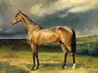 LMOP443 hand painted Tall animal horse & landscape art oil painting on canvas