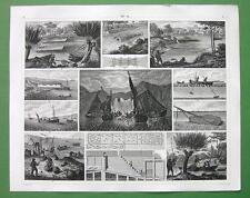 FISHING Fresh Water & Marine Weirs Hooks Nets at Night - 1844 SUPERB Print