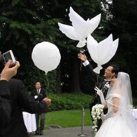 5pcs weiße Taube Helium Ballon Partei Dekor Friedensvogel Luftball Foto Stützen