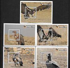 Malawi Vultures