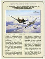 Robert Taylor Russian Roulette Aviation Art FLYER