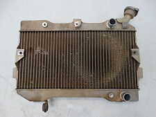 2006 Suzuki LTR450 Radiator with Cap