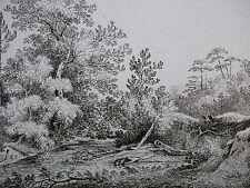 FRANZ RECHBERGER ´WILDE WALD- UND FLUSSLANDSCHAFT; LANDSCAPE´ RADIERUNG, ~1800