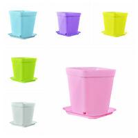10PCS Mini Flower Plastic Pots with Saucer Plant Tray Home Garden White