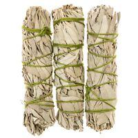Premium California White Sage 4 Inch Smudge Sticks - 3 Pack 🌱