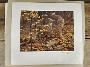John Seerey-Lester, Evening Fall, Red Wolf Print, Signed, Original NWF Envelope