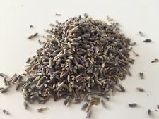 Loose Dried Lavender  10g, 25g, 50g, or 100g