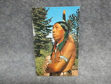Sturgeon Falls Ontario Canada Postcard Native American Indian Color Photograph