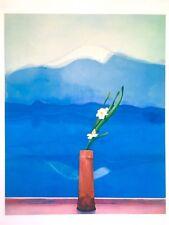 """DAVID HOCKNEY RARE 1996 MET MUSEUM LITHOGRAPH PRINT """"MOUNT FUJI & FLOWERS"""" 1972"""