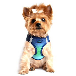 American River Choke Free Dog Harness Northern Lights Ombre Collection  XXS-3XL