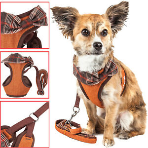Pet Life 'Pawsh' 2-in-1 Fashion Dog Harness-Leash with Designer Autumn Bowtie