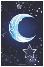 Website Password Keeper Internet Journal Username Book Logbook Blue Moon Stars