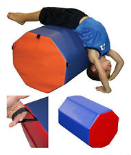 Large Octagonal Gymnastics Tumbling Mat Handspring Assistant Gym Mat Kids Play