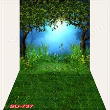 Spring 10'x20'Computer/Digital Vinyl Scenic Photo Backdrop Background SU737B88