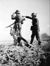 WW2 Photo WWII German Soldiers with Shepherd Dog  World War Two Wehrmacht / 2441