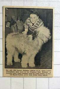 1964 11-year-old Russell Kellow Of St Erth With His Old English Sheepdog