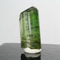 27.50ct Green Tourmaline Gem Crystal Mineral Minas Gerais Brazil PerCas3 08