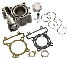 8851 Kit cilindro in ghisa X-Max 125 Ø52 C4 Yamaha YZF R 125 IE 08/09