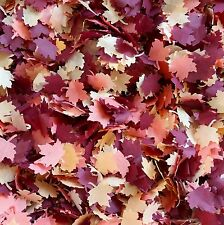 Biodegradable LIGHT AUTUMN shadows MAPLE LEAVES Wedding throwing table confetti