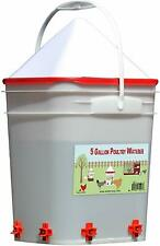 Chicken Poultry auto hanging bucket nipple waterer