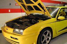 1987-96 Chevy Beretta Hood QuickLIFT Black Gas Strut Spring Shock Damper Lifter
