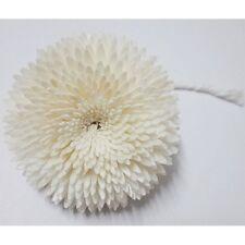 Big Gerbera Handmade Flower Natural Sola Wood Reed Diffuser Wedding Banquet Spa