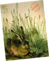 """Hare in the Weeds 1502 Albrecht Durer FINE ART PRINT 12 x 18"""" Quiet Rabat Nature"""