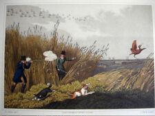Antique Hand Colored Aquatint H.Alken BITTERN SHOOTING 1820 Hunting, Rifle Sport