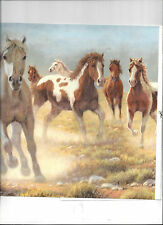 WALLPAPER BORDER WILD HORSES STAMPEDE RANCH COUNTRY WESTERN PAINT HORSE MUSTANG