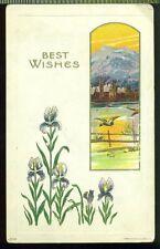 1909 JULIUS BIEN Best Wishes IRIS GEESE MOUNTAIN SCENE GOLD Vintage Postcard