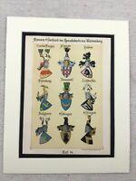 1886 Antico Stampa Tedesca Armorial Stemmi Araldico Art Bavarese Nobility Art