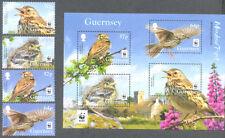 Guernsey -Meadow Pipit- Set+Min sheet  -mnh(15.2.2017)